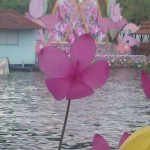 IMG-20121029-01177